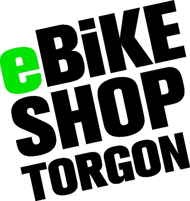 ebike velo electrique torgon suisse